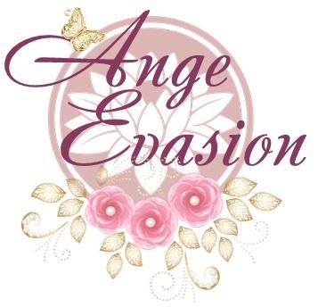 logo Ange Evasion